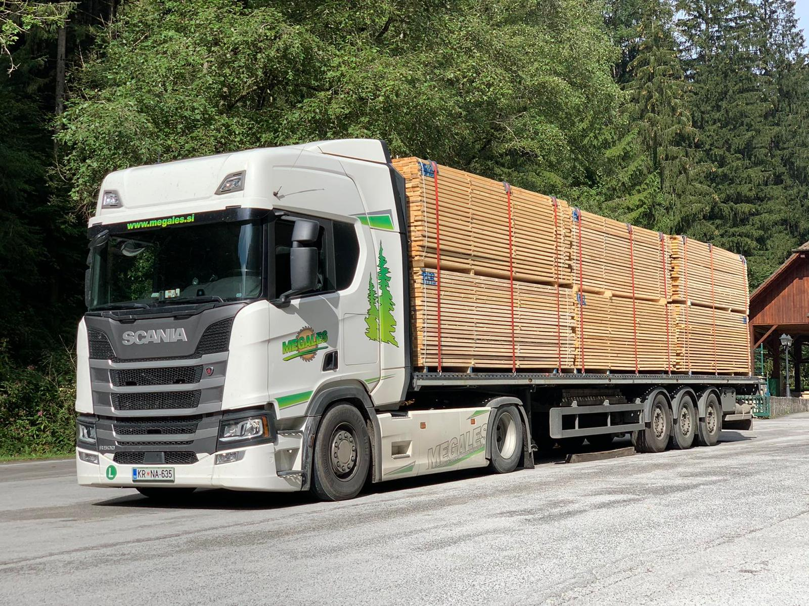 Nudimo vam vse vrste prevozov lesa megales