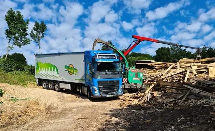 Odkup lesa za biomaso megales1