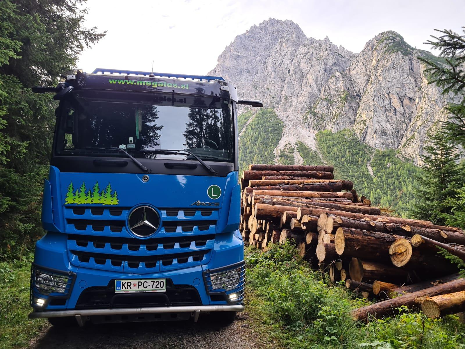 odkup lesa na kamionski cesti Megales